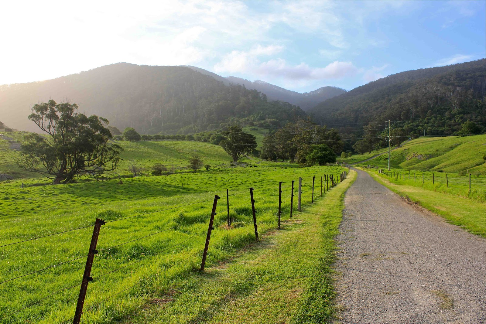 Tilba Tilba Australia  city photos gallery : Posted by Sarah at 7:54 PM Location: Tilba Tilba NSW 2546, Australia