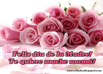 docena de rosas para el dia de la madre