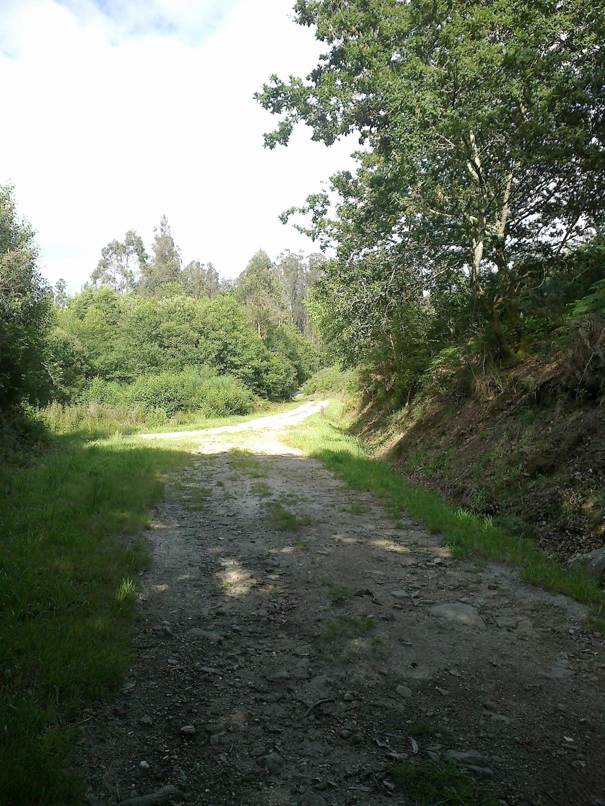 Pista en la ruta de Riamonte en Ames