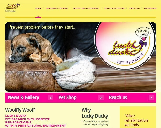 www.luckyducky.in