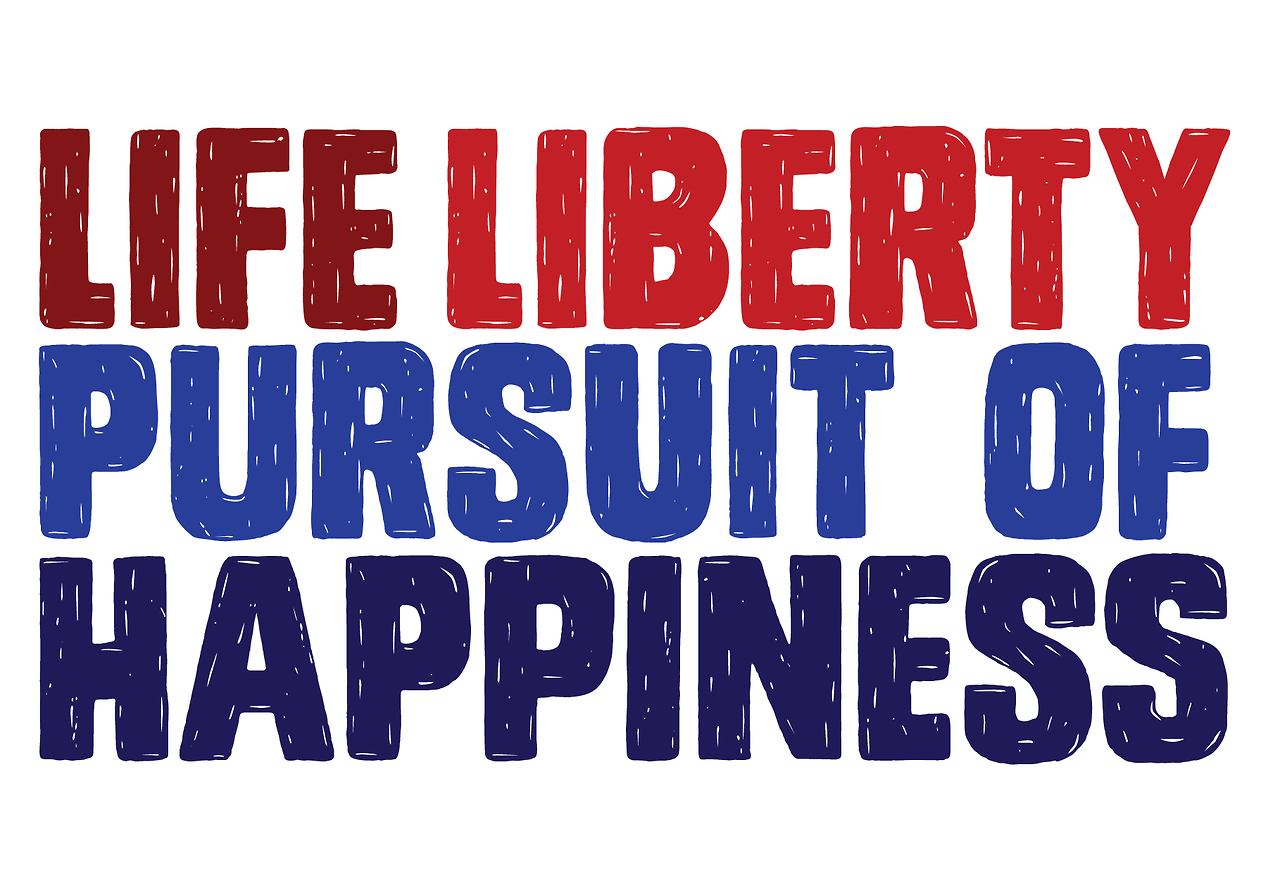 life liberty and the pursuit of happiness essay Life, liberty and the pursuit of happiness is the cornerstone of our nations declaration of independence when considering this quote and identifying an individual.