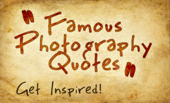 Quotes Photography Prepossessing Hand Picked Best Quotes About Photography  Design Arena