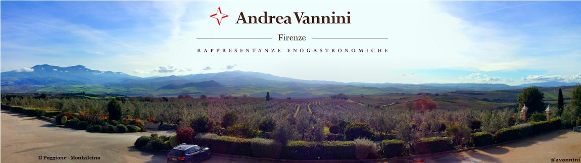 Andrea Vannini Rappresentanze