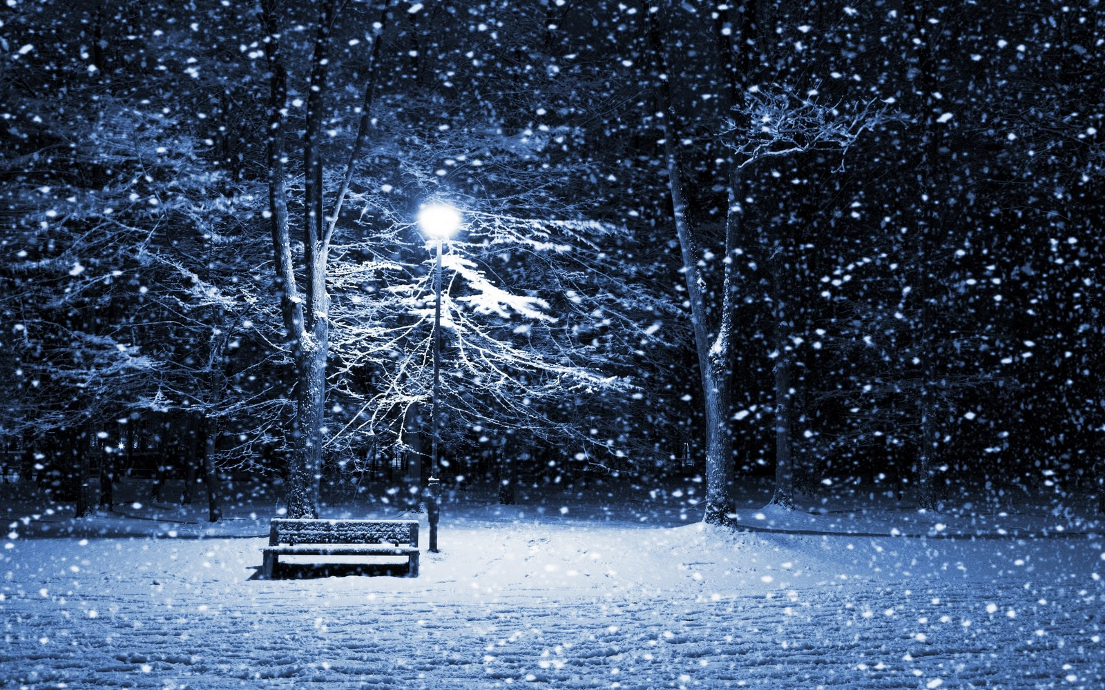http://1.bp.blogspot.com/-uow6esPkA4I/Tw875p9IZqI/AAAAAAAAC3w/oMVBMUj00KY/s1600/Quiet+Winter+Night+HD+Wallpapers.jpeg