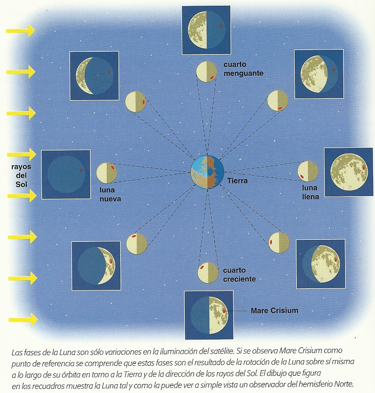 Imagen Tomada Del Libro Descubrir La Luna   Larousse  2004