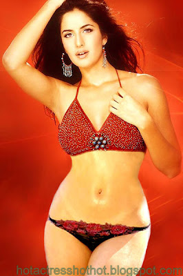 katrina kaif hot pics in two piece bikini