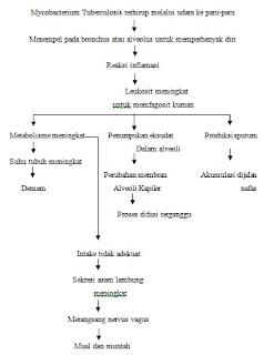 Skema patofisiologi tuberkulosis paru