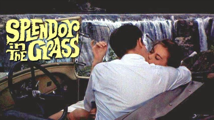 A Vintage Nerd, Vintage Blog, Classic Romance Movies, Classic Film Blog, Old Hollywood Blog, Splendor in the Grass