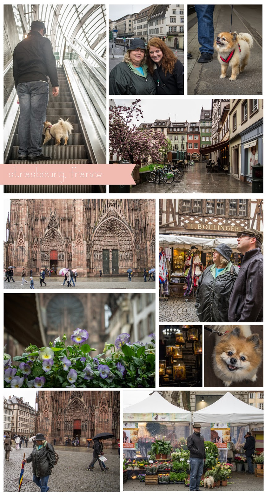 Day trips from Rheinland Pfalz: Strasbourg, France