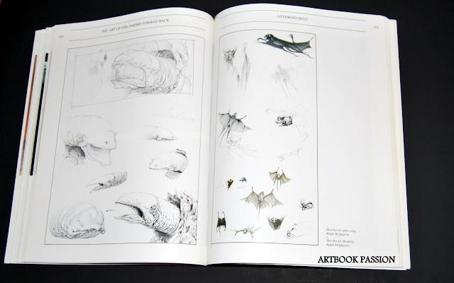 ART OF STAR WARS  - Page 2 DSC_0133