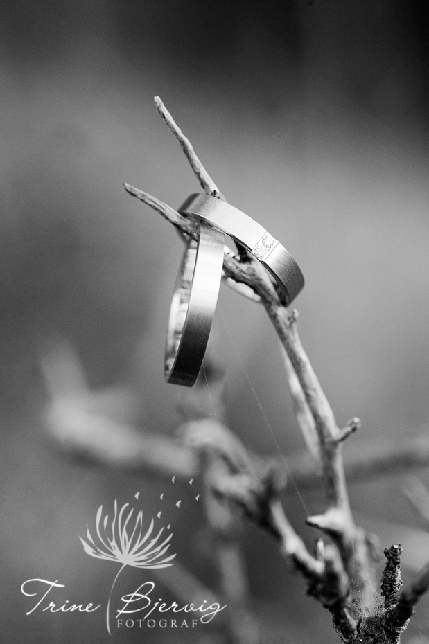 Detaljbilde av ringene, Fotograf Tønsberg