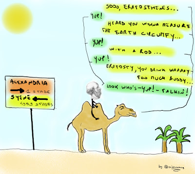 Disegno di Eratostene con il suo cammello