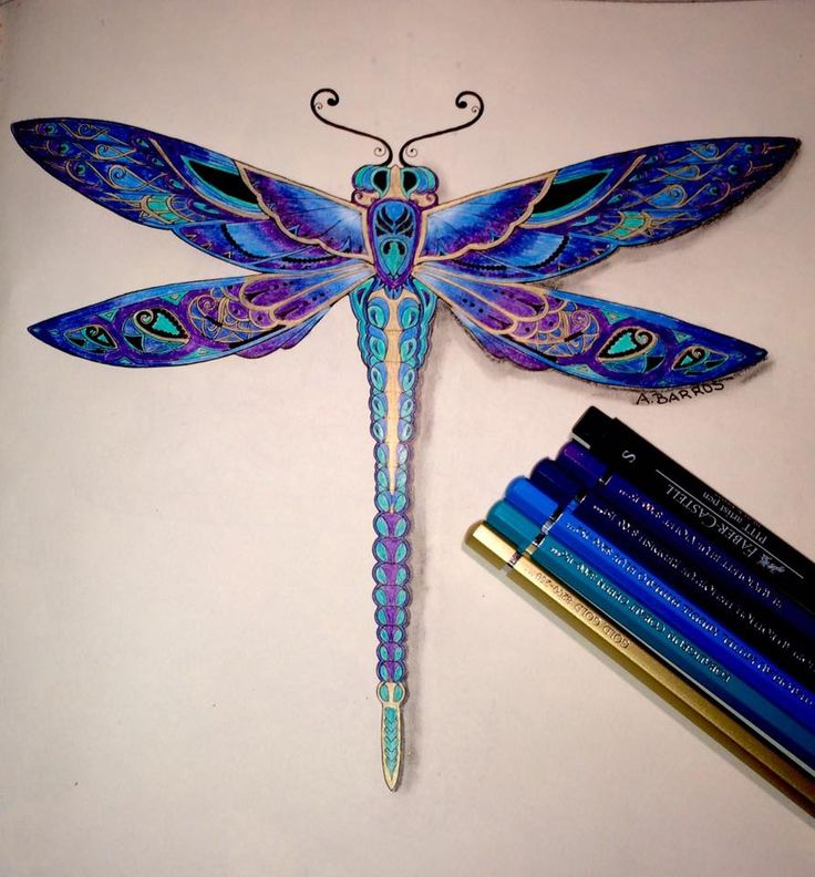 Coloring Book For Adult Johanna Basford Dragonfly