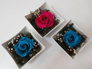 Rosas Naturales Preservadas Turquesa y fucsia ¡Duran 4 Años! Santa Ana, El Salvador