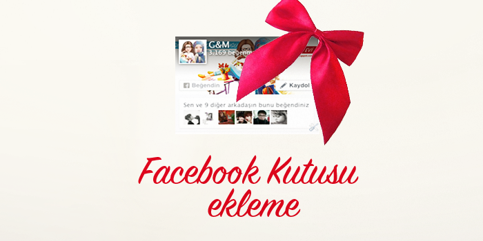 facebook kutusu