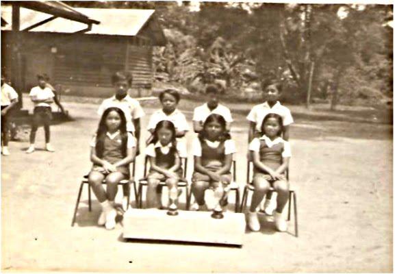 Sekolah Melayu Bukit Besi