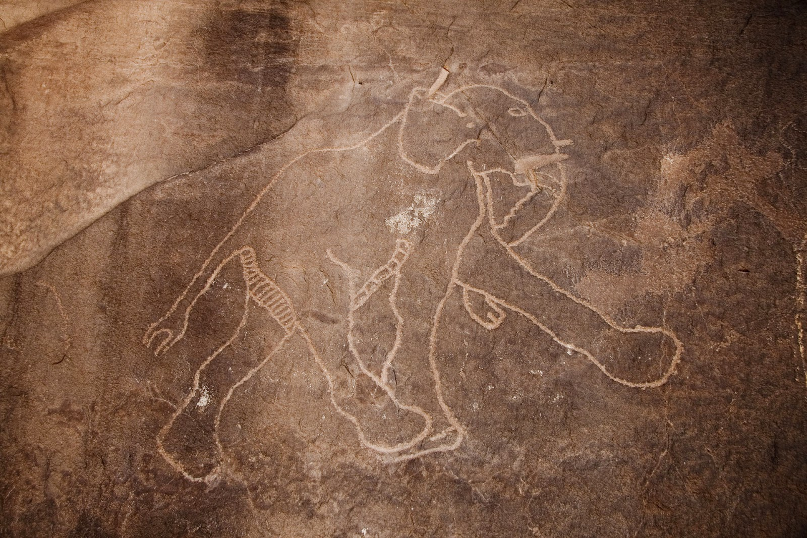 Sahara Cave Painting