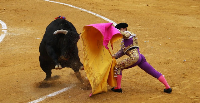 Travel around Spain - Bullfighting, Spain at its purest!