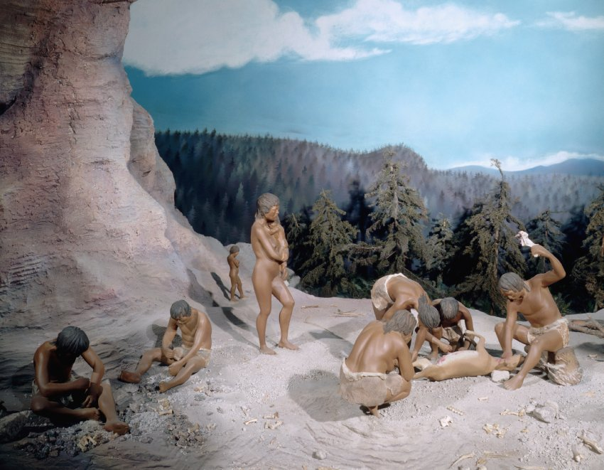 women in the paleolithic period Paleolithic essay paleolithic essay paleolithic age and then began to transform with the transformation of the paleolithic age to the neolithic age women in.