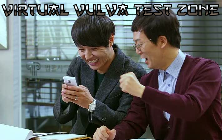 Virtual Vulva Testing with Phani Pak