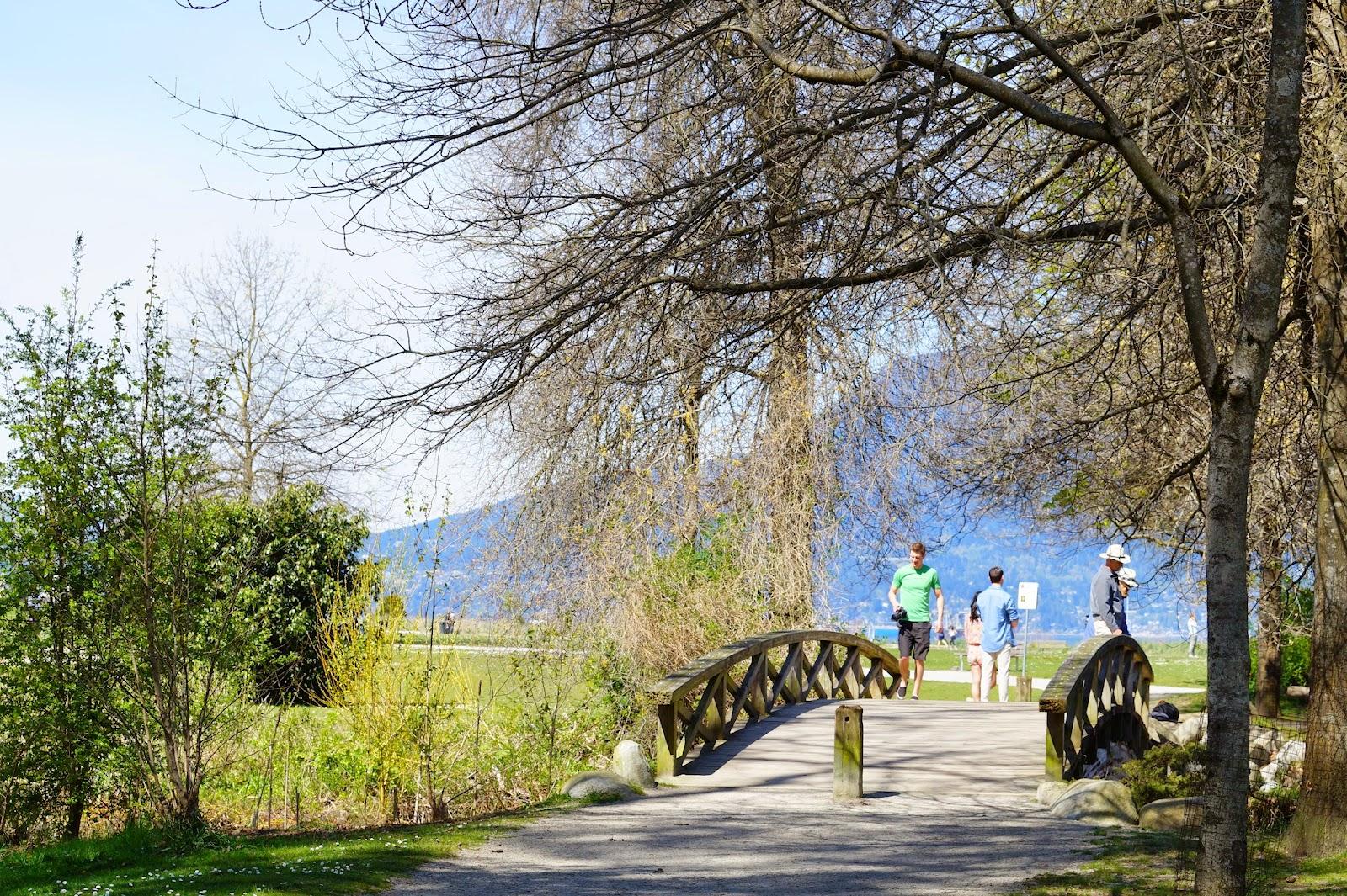 Через один из прудов ведёт небольшой мост - удобный плацдарм для фотоохоты за местной дичью