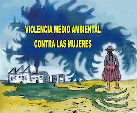 ¿QUE ES VIOLENCIA MEDIO AMBIENTAL CONTRA LAS MUJERES?