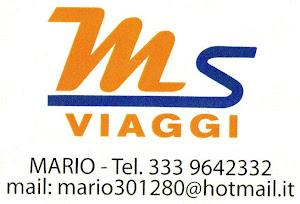 MS VIAGGI