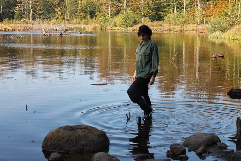 giro in bosco, 4 ottobre 2014