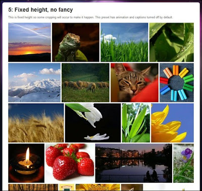 Justified Image Grid - Premium WordPres Gallery