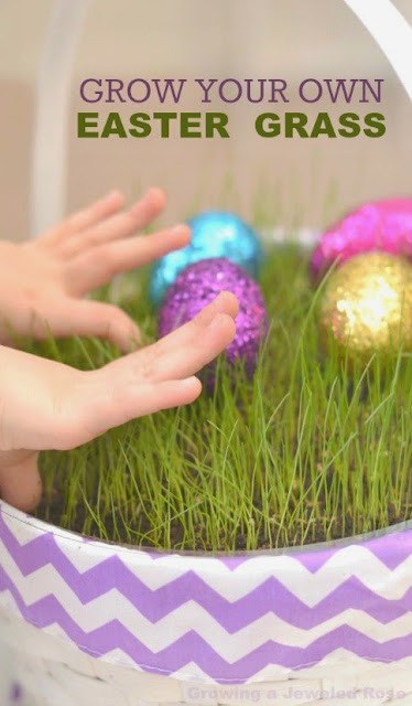 Growing Easter basket grass- a fun project for the kids! My girls loved watering their grass and watching it grow! { This takes a few weeks so you will want to do this a bit before Easter}