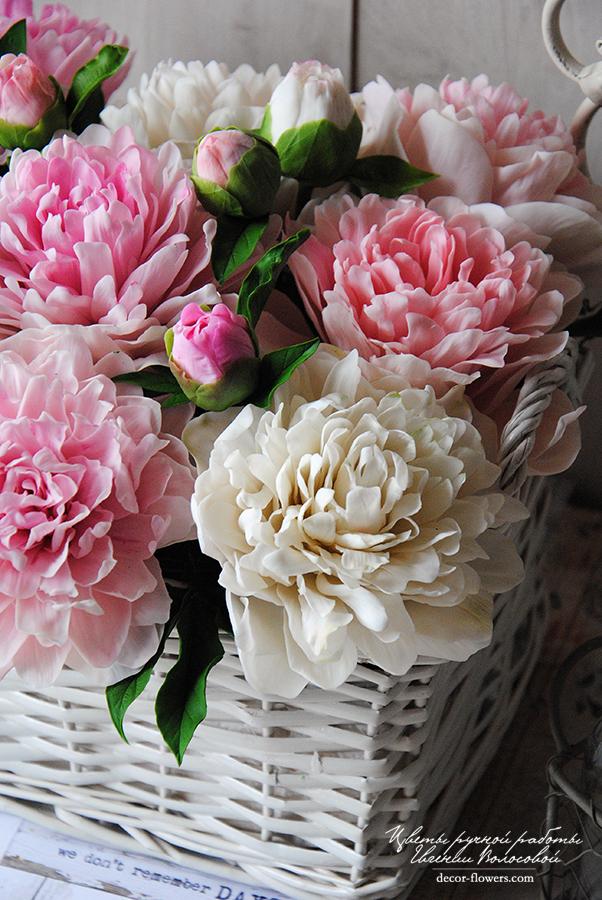 многолетние цветы в грядках фото
