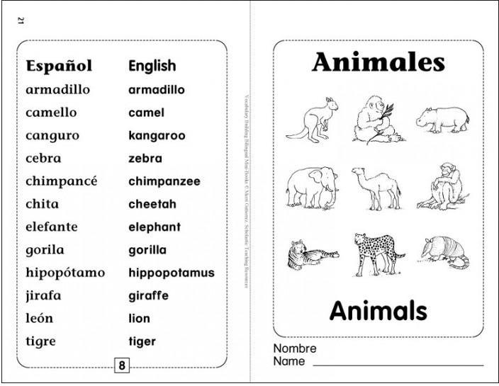 ... of the animales animals bilingual mini book and brought with me a box
