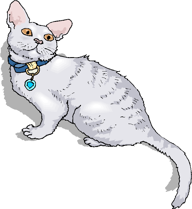 White Cat Looking Up Free Clipart