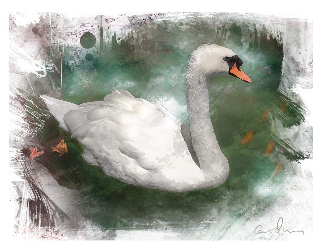 Cisne y peces en el estanque pixelado for Pintura para estanques