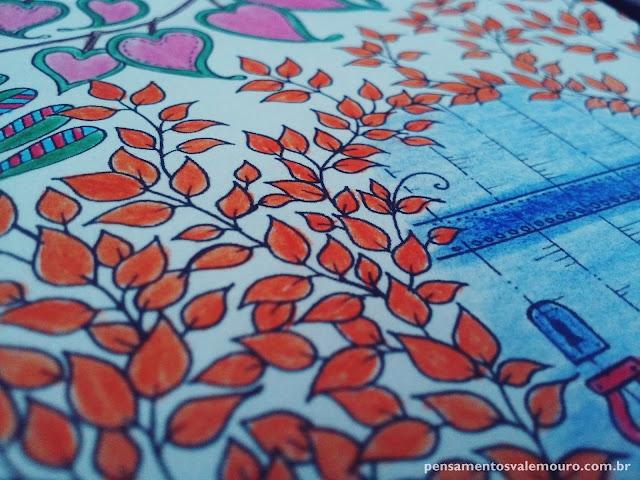 Lente Criativa, fotografia, detalhes,  Jardim Secreto, Livros decolorir