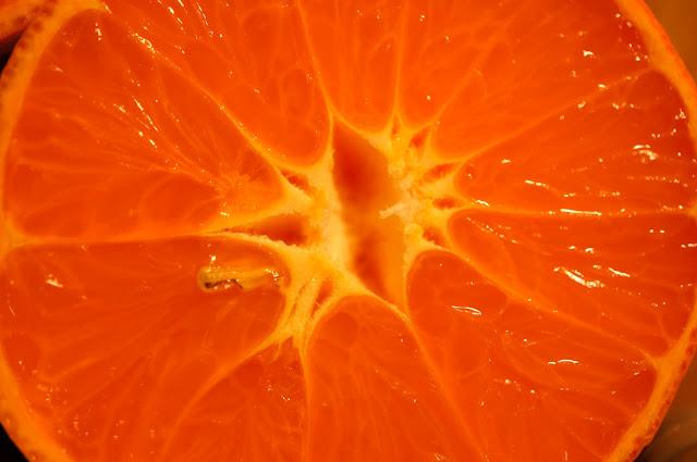 copyright free image orange