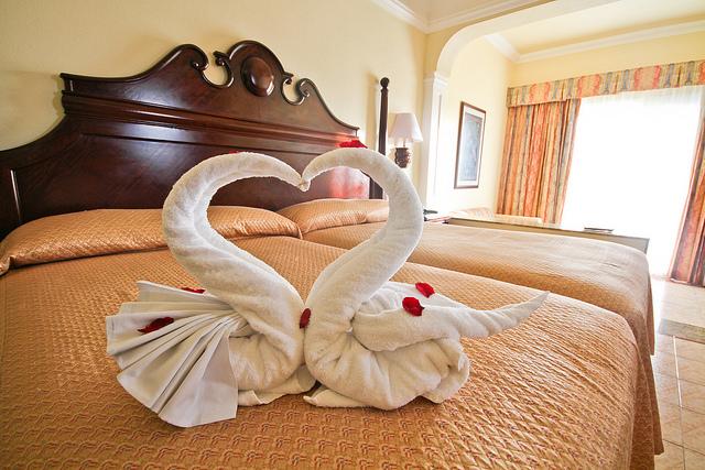 Animales hechos de toalla super original taringa for Animali con asciugamani