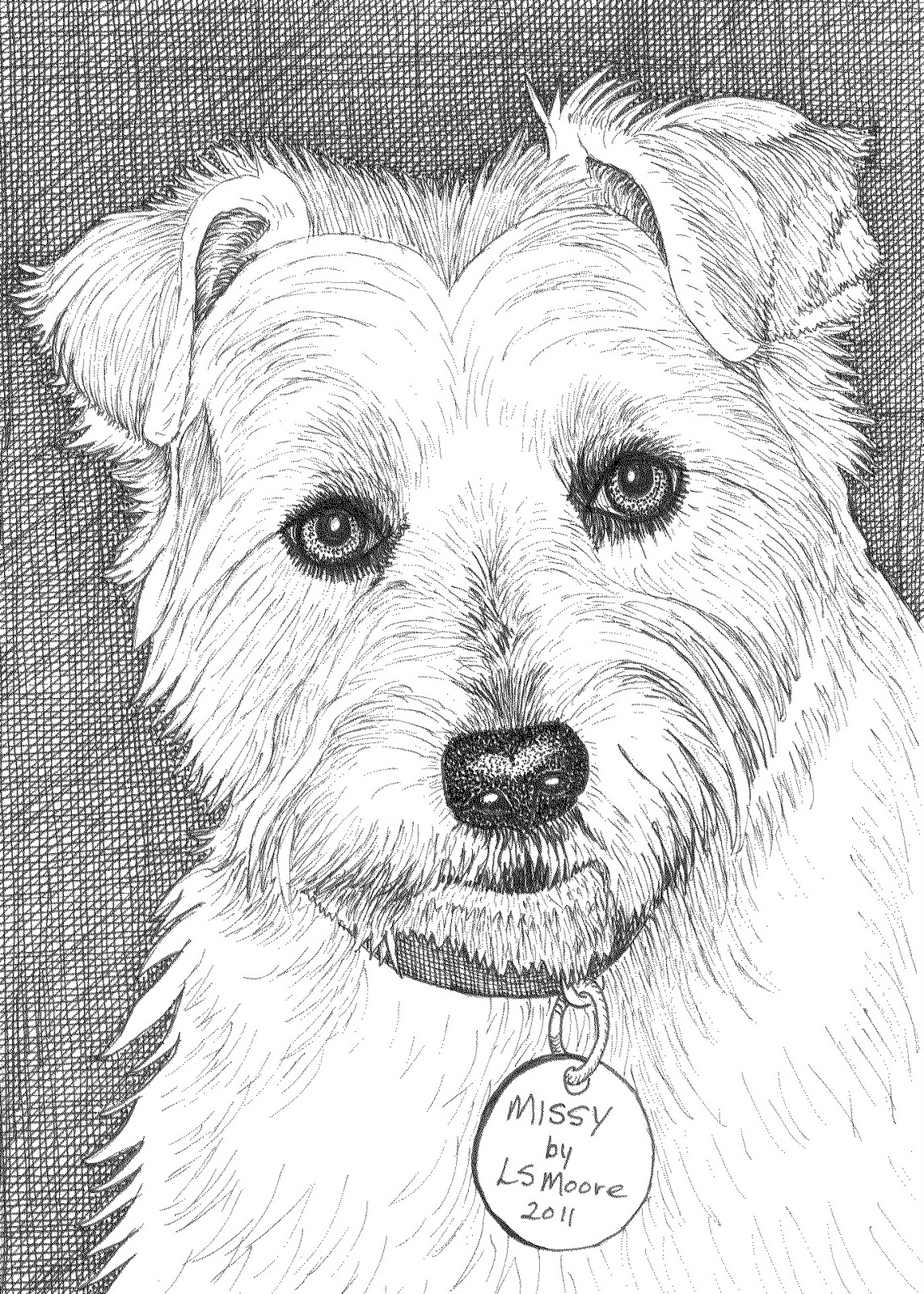 westie coloring pages how to draw westie