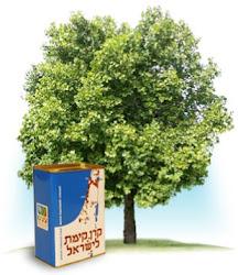 Planta un árbol por 10€