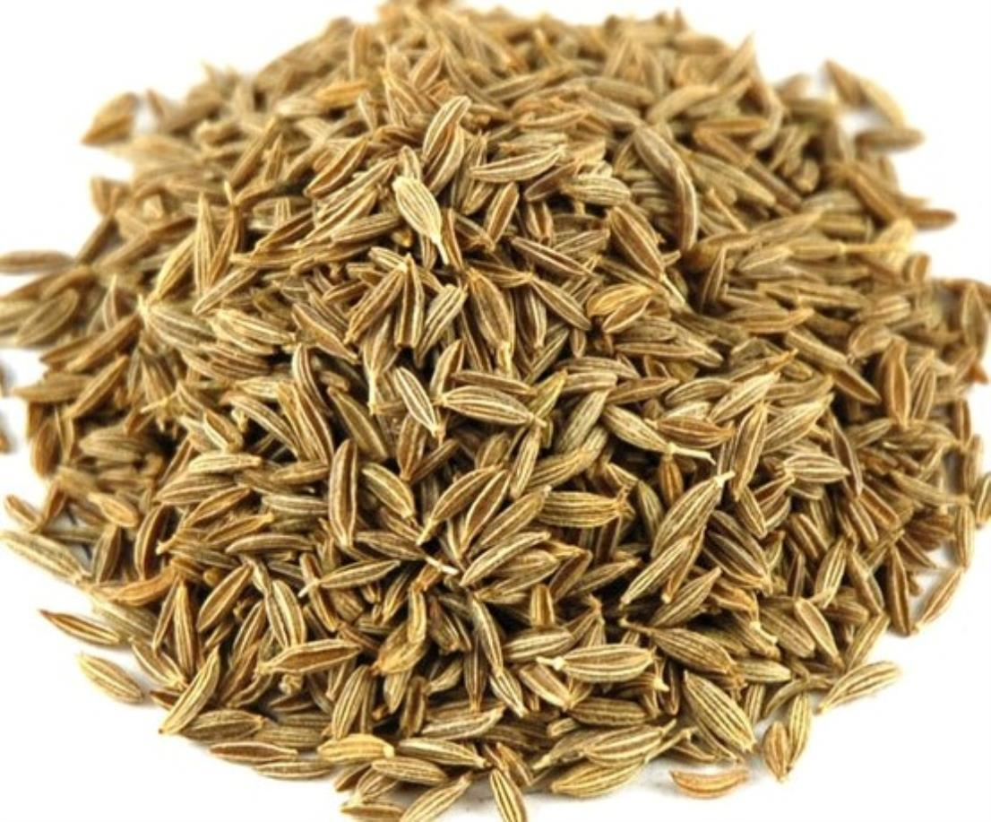 Cumin seeds - www.worldbusinesszone.com