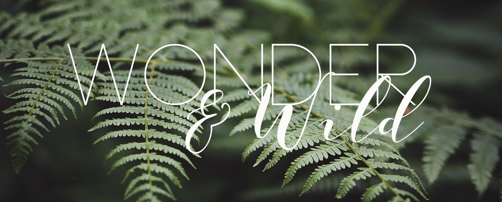 Wonder and Wild