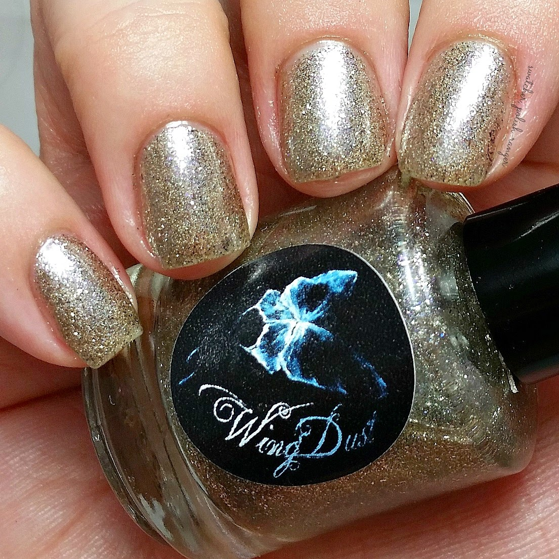 swatcher, polish-ranger | WingDust Collections Perfect Little Satellite swatch