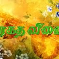 Maragatha Veenai 21-10-2016 Episode 822- Sun TV Serial