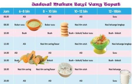 Jadwal makan bayi umur 6 bulan