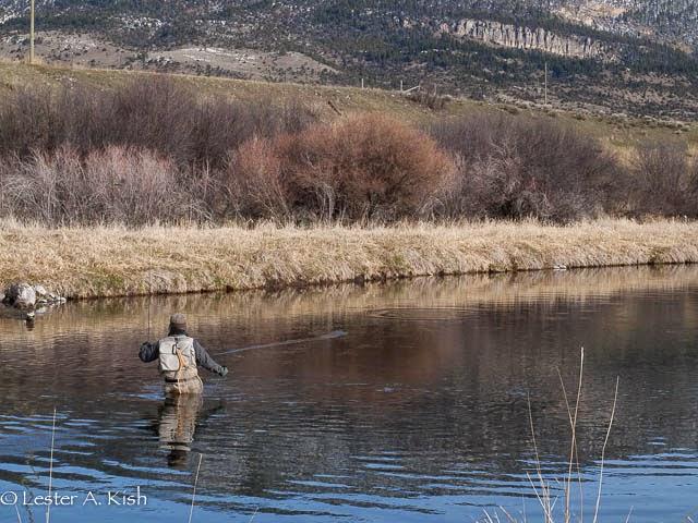 Satoshi Yamamoto, fishing, trout, casting, DePuy Spring Creek