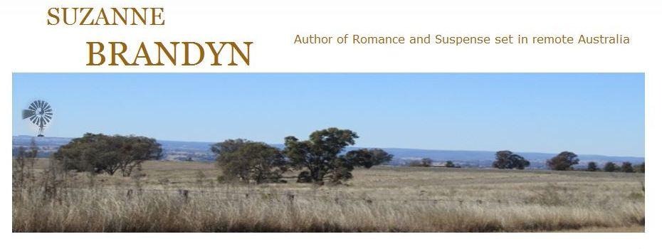 Suzanne Brandyn Author Blog.