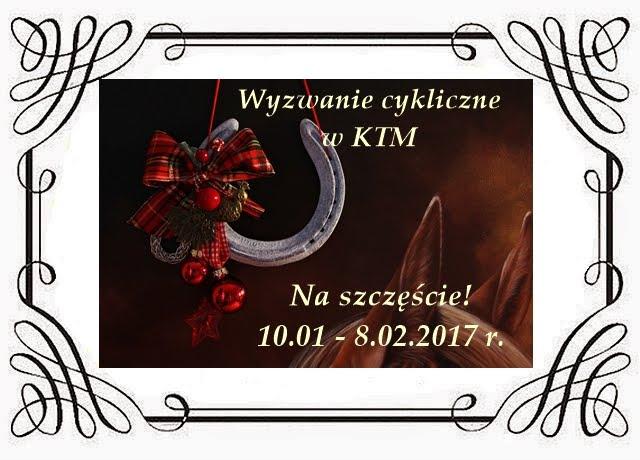 Wyzwanie w KTM