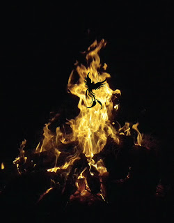 phoenix bird silhouette rising from a bonfire