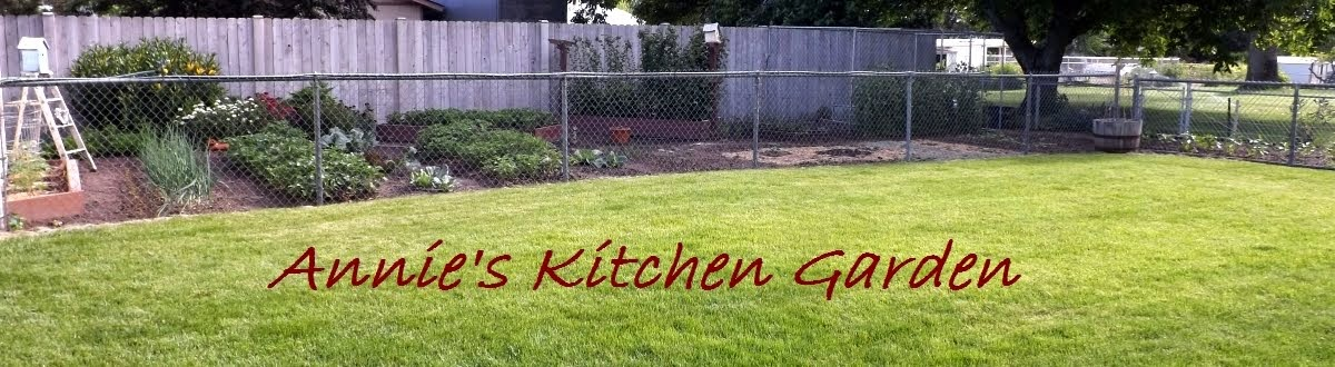 Annie&#39;s Kitchen Garden
