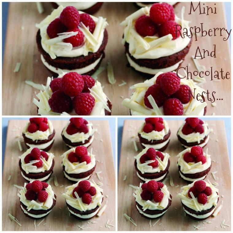 Mini Raspberry And Chocolate Nests Claire Justine